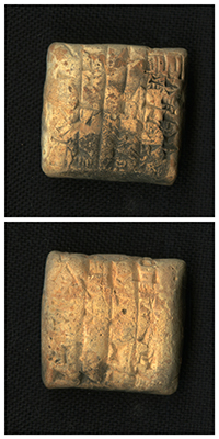 This cuneiform tablet, which is a receipt for cattle, measures 2.5 x 2.5 cm